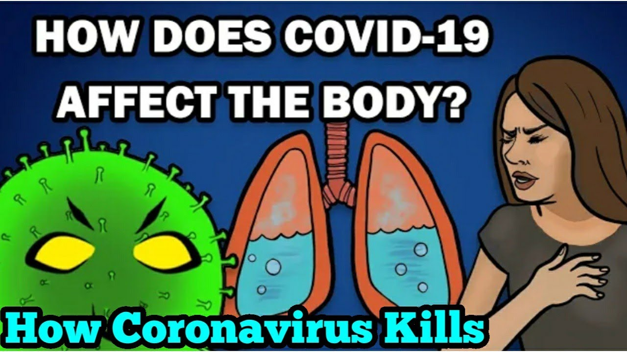 How COVID-19 Affects the Body